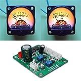 CENPEN Módulo de prueba, 2 PC con conductor Módulo Medidor VU cálida luz de fondo grabación de audio nivel de amplificación de componentes