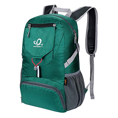 Waterfly Packable Backpack Daypack for Men Women 16L Lightweight Travel Hiking Daypack (Green)