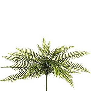 "Silk Flower Arrangements SilksAreForever 21.5"" Artificial Sword Fern Leaf Plant -Green (Pack of 6)"