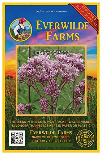 Everwilde Farms - 2000 Joe Pye Weed Native Wildflower Seeds - Gold Vault Jumbo Seed Packet
