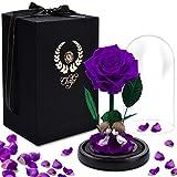 Rosa Eterna, Chalpr La Bella y La Bestia Rosa Preservadas en Cúpula de Cristal, Magicos Decoración para Día de San Valentín Aniversario Bodas el Mujer Romántica Sorpresa Regalo para Ella (Morado)