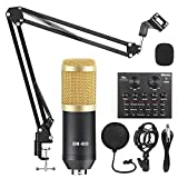 Ybzx Kits de grabación de Estudio de micrófono BM-800 Micrófono de Condensador para computadora Phantom Power BM-800 Tarjeta de Sonido de micrófono de Karaoke