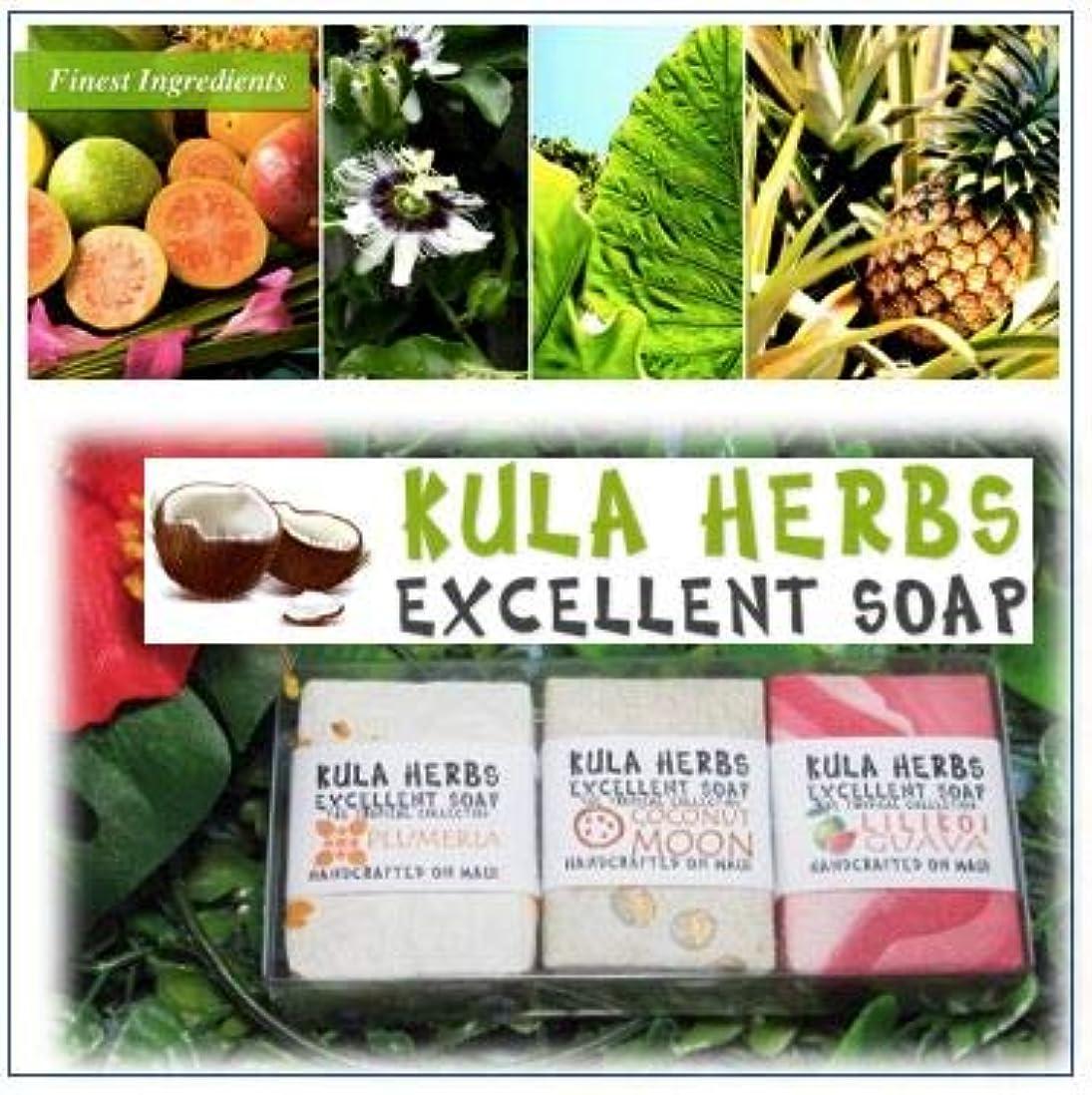 叫び声単に予測ハワイの香り?ナチュラルソープ【Kula Herbs excellet】
