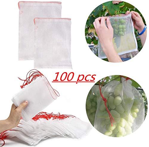 QWCZY 100 Bolsas PC protección de la Fruta, 10