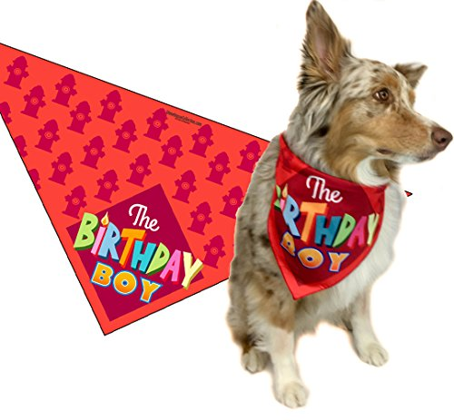 Best happy birthday dog bandana boy for 2020