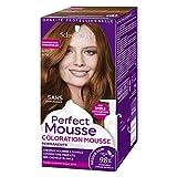Schwarzkopf - Perfect Mousse - Coloration Permanente Cheveux - Blond Foncé cuivré 670