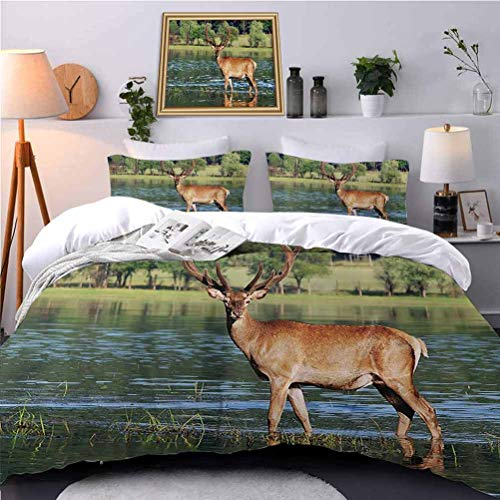 UNOSEKS LANZON Quilt Cover Set Cute Mountain Deer in The Water with Forest Background Male Mammal Freedom Habitat Premium Quilt Cover Gives You a Good Sleep - Twin Size