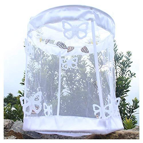 Jaulas Mini Insecto Mariposa terrario y los Insectos de la Mariposa del hábitat de Insectos terrario para niños Juegos al Aire Libre 18 * 18 * 36cm