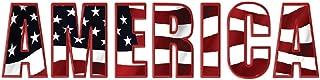 10x3 Patriotic Bumper Sticker Auto Decal USA Flag America Freedom Patriotism (America)