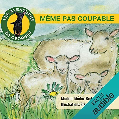 Même pas coupable (Les aventures de Georges) cover art