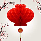 14 Pcs Paper Red Lantern,Chinese New Year Decoration,Red Envelopes Hong Bao Red Felt Lucky Character Chinese Fu Character Paper Window (Lantern)