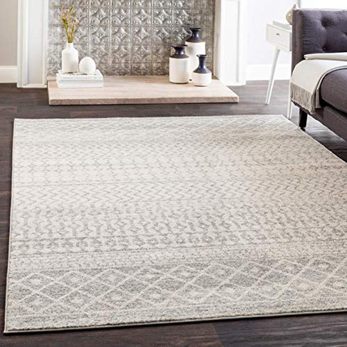 Grey and White Area Rug
