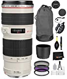 Best Canon Lens For Sports - Canon EF 70-200mm f/4L USM Lens with Professional Review