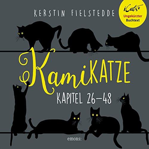 Kamikatze 2 audiobook cover art