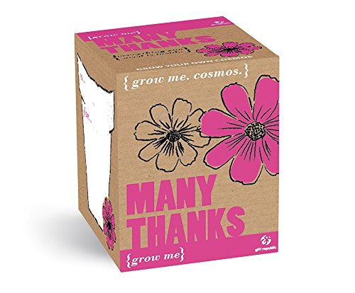 GROW ME Many Thanks Cosmos plant, cadeau, hartelijk dank