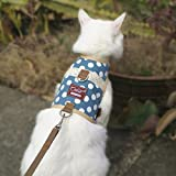Yizhi Miaow Escape Proof Kitten Harness with Leash X-Small, Adjustable Kitten Walking Jackets, Padded Kitten Vest Polka Dot Blue