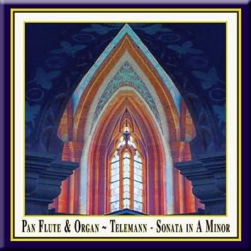Pan Flute & Organ - Telemann: Sonata in A Minor (Originally composed for Oboe & Basso Continuo)