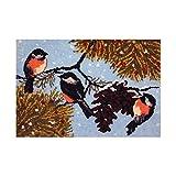 Kits de gancho de pestillo Haz tu propia alfombra de pájaros Tapicería de ganchillo Alfombra de cojín DIY alfombra de bricolaje Set de alfombras preimpresas Kits de alfombra DIY para principiantes Afi