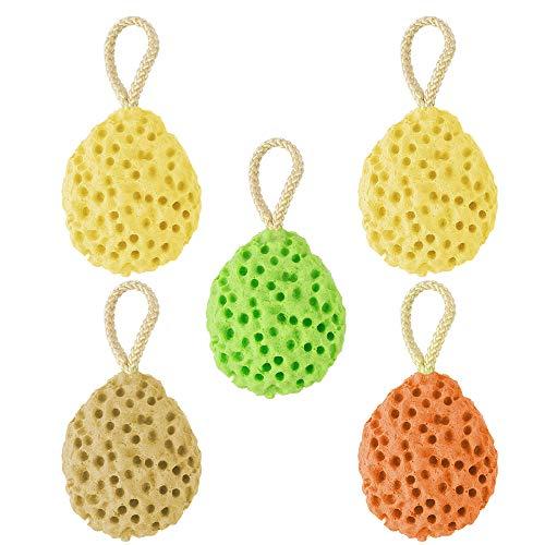 Dadabig 5 Piezas Esponjas de Baño Naturales Esponja Hidrofílica Esponjas de Ducha Súper Suave para Limpieza Corporal del Bebé Mujeres Hombres,4 Colores