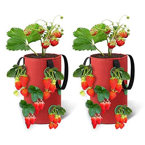 NICEME Paquete De 2 Bolsas De Cultivo De Fresas De 3 Galones Bolsas De Cultivo De Jardín para Colgar Macetas De Fresas Tela No Tejida Transpirable con Asas para Flores De Hierbas De Fresas De