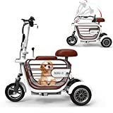Electric Three-Wheel Folding Bicycle Adult Elderly Mini Outdoor Wagon 48V20A Lithium Electric...