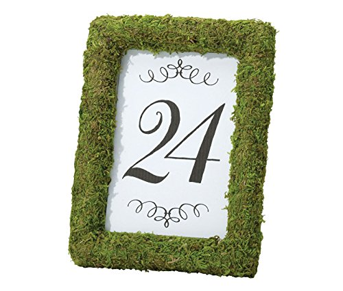Lillian Rose Rustic Green Moss Frame 4x6
