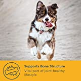 Gelenk-Ergänzungsfutter für Hunde – MaxxiFlex Plus – Hunde Gelenke – Fortschrittliche Formel – Glucosamin HCL, Chondroitin-Sulfat, MSM, Hyaluronsäure, Teufelskralle, Bromelain, Gelbwurz – Linderung Von Arthritisschmerzen – Beste Hüftunterstützung Für Hunde – Hunde-Hüftdysplasie – Alle Rassen Und Größen – 120 Hochwertige Kaubare Tabletten – Geschmacksgarantie - 3