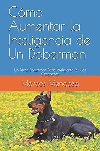 Cómo Aumentar la Inteligencia de Un Doberman: Un Perro Doberman Más Inteligente Es Más Obediente