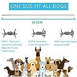 IMG-1 prozadalan collare antipulci cane antiparassitario