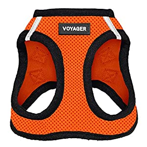 Best Pet Supplies Voyager Step-in Air Dog Harness – All Weather Mesh, Step in Vest Harness for Small and Medium Dogs, Orange Base, M (Chest: 16-18″) (207-ORB-M)