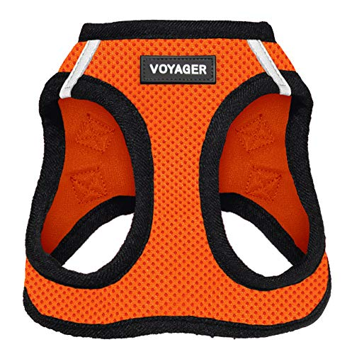 Best Pet Supplies Voyager Step-in Air Dog Harness - All Weather Mesh, Step in Vest Harness for Small and Medium Dogs, Orange Base, M (Chest: 16-18