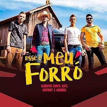 Esse É Meu Forró (feat. Forró Nois, Antony & Gabriel)