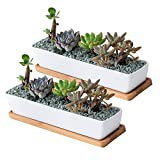 Succulent Pots,11.1 inch Long Rectangle White Ceramic Succulent Planter Pots/Mini Flower Plant Containers with Bamboo Saucers,Set of 2
