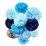 Tissue Paper Flowers Pom Poms Decorations - Bright Colorful Large Rainbow Kids Craft Assorted Bulk Kit Hanging Wall for Big Wedding, Happy Birthday Party Decor (Navy Blue Pack)