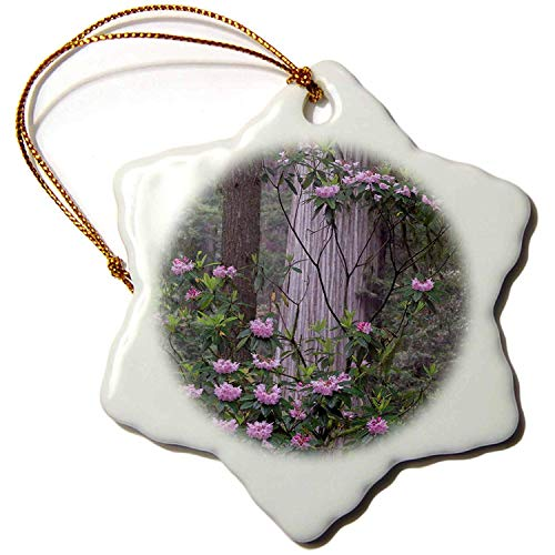 Leop345old Forests - California. Rhododendron and Redwoods in Redwood NP. - 3 inch Snowflake Porcelain Ornament 607