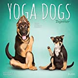 Yoga Dogs Together OFFICIAL 2021 12 x 12 Inch Monthly Square Wall Calendar by Plato, Animals Humor Dog
