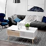 Homfa Couchtisch Wohnzimmertisch Sofatisch Kaffeetisch TV Board lowboard Holz weiß 100x49.5x43cm - 3
