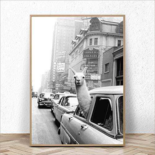 wtnhz Kein Rahmen Alpaka in einem Taxi auf Times Square Leinwanddruck und Poster Vintage Lama Kunstdruck New York City Foto Bild Wandkunst Home Decor