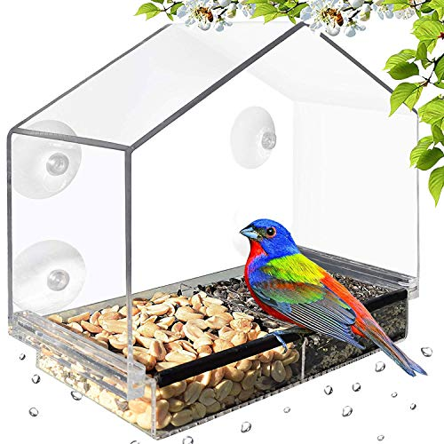 Deluxe Clear Window Bird Feeder, Large Wild Birdfeeder with Drain Holes, Removable Tray, Super Strong Suction Cups, Transparent Viewing, Covered, High Seed Capacity, Rubber Perch