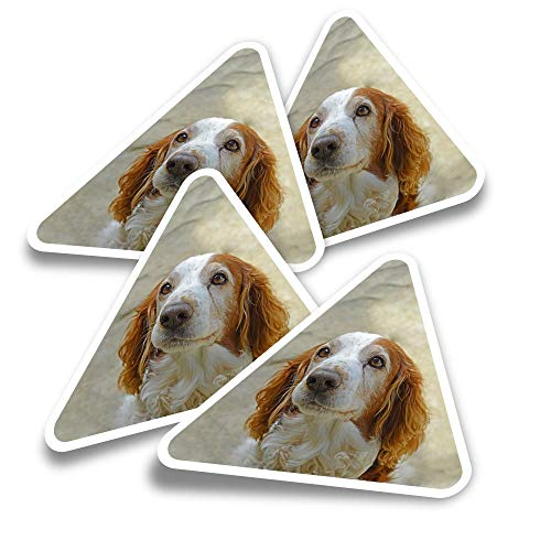 Vinyl Triangle Stickers (Set of 4) - Welsh Springer Spaniel Dog Puppy Fun Decals for Laptops,Tablets,Luggage,Scrap Booking,Fridges #16838