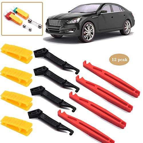 Dancepandas Alicates de extracción de fusibles 12PCS Extractor de fusibles Clip de fusible de coche para herramienta de inserción de extractor de fusibles de vidrio de hoja de fusible de coche