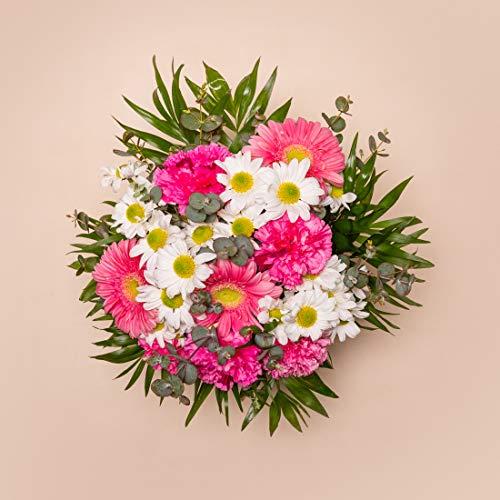Ramos de flores naturales a domicilio variado Alifornia - Flores frescas - Envío a domicilio 24h GRATIS - Tarjeta dedicatoria incluída - Caja especial para ramos de flores naturales.…