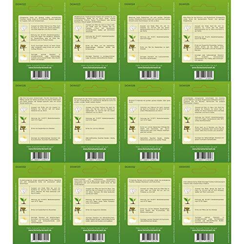 Gemüsesortiment | Gemüse-Set mit 12 Sorten Samen | Gemüsesamen-Sortiment | Saatgut für den Gemüsegarten - 4