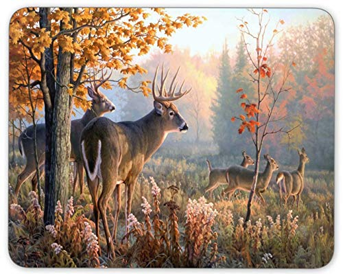 Mouse Pad Deer Rectangle NonSlip Rubber Mouse Mat for Computer Desk Laptop Office blue4