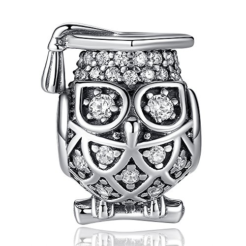 2020 Graduation Gifts 925 Sterling Silver Graduate Owl Charm with Cap Graduation Charms for Bracelets Perfect College/High School Graduation Gifts for Girls Daughter Granddaughter