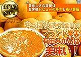 和歌山県産:有田みかん「美甘娘」 秀品 Mサイズ 5kg