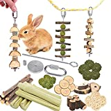 40pcs DIY Rabbit Chew Toys, Guinea Pig Chew Toys for Teeth, Create Unique Chew Toys for Small Animals, Ideal Teeth Care Molar Toys for Rabbit, Guinea Pig, Chinchilla, Hamster, Squirrel Etc