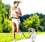 Pugga® NEUERÖFFNUNGSANGEBOTE elastische und flexible Jogging Hundeleine, haltbarer Doppel Dual Griff Bungee Gummi Leine, reflektierend, 1,2 m bis zu 2m dehnbar, verstellbarer Hüftgurt (Passend bis zu 1 m Taille) aus reißfestem Nylon für Hunde bis max. 45 kg, Farbe: grau und grün - 2