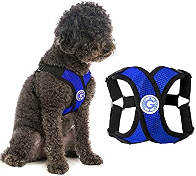 Gooby Dog Harness - Blue, Medium - Comfort X Step-in Small Dog Harness with Patented Choke-Free X Frame - Perfect on The Go No Pull Harness for Small Dogs or Cat Harness by Inafiction USA, Inc. dba Gooby Pet Fashion