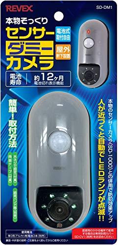 リーベックス『本物そっくりセンサーダミーカメラSD-DM1』